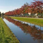 Königswiesen Kanal Im Herbst